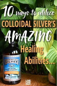 Recent studies indicate that colloidal silver benefits warrant it a place in the medicine cabinets of all natural living enthusiasts. Health Clear Skin Health Remedies Health Tips Health For women Health Natural Health Tips Holistic Remedies, Natural Health Remedies, Holistic Healing, Herbal Remedies, Sovereign Silver, Ginger Benefits, Cold Home Remedies, Alternative Medicine, Larissa Reis