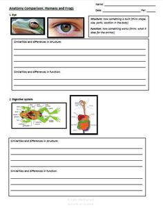 Anatomy comparison for humans and frogs: Get the most out of your dissection with this follow up activity! Students will combine observations from the dissection with background information to discover the similarities and differences in frog and human anatomy.