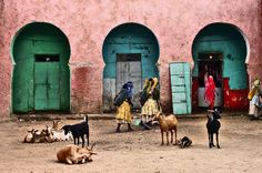 Mercato Harar photographs Eric Lafforga (Eric Lafforgue)