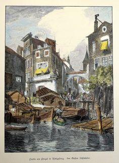 Königsberg Pr. Holzstich um 1880