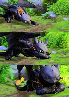 This is one of my most favorite scenes in the movie: Where Toothless tries to catch the dot of light like a cat. lol