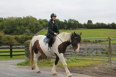 Rocky taking a novice rider out for a hack. #loveirishhorses #horseforsale  click on our website to find out more about #horseriding #holidays at Cooper's Hill Livery http://coopershilllivery.wix.com/coopers-hill-livery