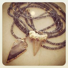 shark tooth and arrowhead