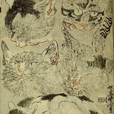 Kawanabe Kyosai (1831-1889) #kyosai #ukiyoe #catart #cat by moirahahnart