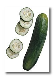 How to Choose what type of Cucumber and How to Grow it! The Pickling Cucumber is my favorite and it grows well in a pot..  http://urbanext.illinois.edu/veggies/cucumber.cfm Cucumber Vegetable, Thai Cucumber Salad, Cucumber Plant, Cucumber Recipes, Salad Recipes, Freezer Pickles, Refrigerator Pickles, Home Flowers, Photo Link
