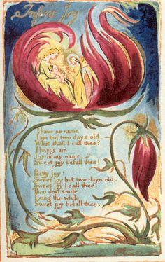 William Blake - InfantJoy
