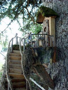 Boomhuis met trap