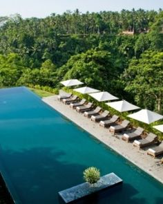 Alila Ubud clings to a hillside over the Ayung River, surrounded by pure, unadulterated nature. #Bali