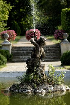 http://diy-gardensupplies.com/ Fountain with cherub as a focal point in back garden surrounded with boxwood