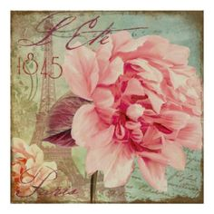 Vintage Paris Pink Rose Poster