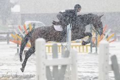 Most athletes wouldn't practice outside in the snow....but equestrians aren't just athletes, they're way more tough!
