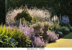 Levens Hall, Cumbria, UK. A famous topiary garden. The mixed Pastel Borders near the bowling green, with catmint - Stock Image