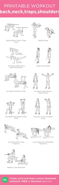 back,neck,traps,shoulders:my visual workout created at WorkoutLabs.com • Click through to customize and download as a FREE PDF! #customworkout