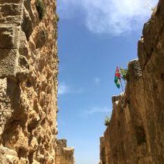el castillo de Ajloun8