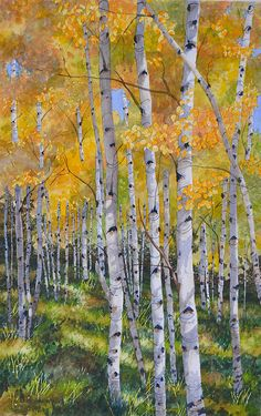 Larry C Haught WATERCOLOR - one of his gorgeous aspen paintings. Larry is a member of the Pikes Peak Watercolor Society and I consider myself fortunate to know him. Birch Tree Art, Art Painting, Landscape Paintings, Tree Painting, Painting, Art, Watercolor Landscape, Abstract, Landscape Art