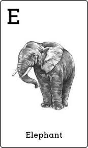 Animal Augmented Reality Apps & Flashcards for Kids All Animals Photos, Animals And Pets, Baby Animals, Cute Animals, Elephant Love, Elephant Art, Classroom Door Displays, Pastoral Counseling, Augmented Reality Apps