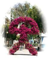 Powerful symbol of the lucky Indalo talisman in flowers