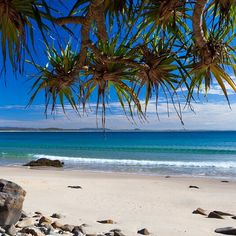 Noosa National Park - Sunshine Coast, Australia ~ find a quieter beach spot during those busier summer days Coast Australia, Queensland Australia, Australia Travel, Sunshine Coast, Travel Oz, Great Places, Places To Visit, Australian Beach, To Infinity And Beyond