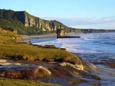 off the Truman Track, near Punakaiki on the west coast of the South Island