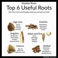 Top 6 Useful Roots (posted by Eleanor) Magic Herbs, Herbal Magic, White Magic Love Spells, Hoodoo Spells, Magick, Voodoo Magic, Spirit Magic, Witchcraft Spell Books, Green Witchcraft