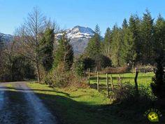 Humedal de Saldropo Country Roads, Mountains, Nature, Travel, Natural Playgrounds, Paths, Naturaleza, Viajes, Destinations