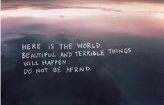 here is the world. beautiful and terrible things will happen. do not be afraid.