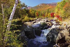 Road Trip: Adirondack Adventure in Upstate New York Adirondack Park, Adirondack Mountains, Lake George Village, New York Hotels, Upstate New York, Day Trips, The Great Outdoors, State Parks, Places To See