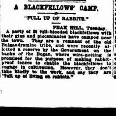 "11 Mar 1908 - A BLACKFELLOWS' CAMP. ""FULL UP OF RABBITS."" PEAK..."