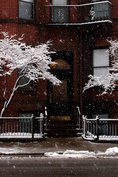 It's winter!   ♡ Pinterest: xchxara ♡
