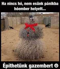 This is a Texas snowman! (made outta tumbleweeds! Funny Cute, The Funny, Funny Fails, Funny Jokes, Funny Images, Funny Pictures, Comedy Pictures, Random Pictures, Bad Memes