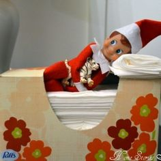 Elf On A Shelf- cute ideas w/ pics by MindiMcNair