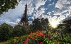 eiffel tower sunlight and flowers garden inside