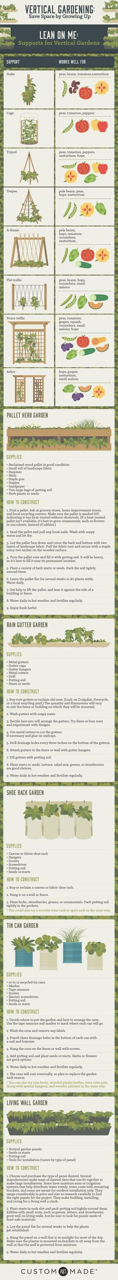 How To Urban Garden Learn how to grow a vertical garden. - Learn how to grow a vertical garden and master vertical gardening with this useful infographic. Vertical Vegetable Gardens, Veg Garden, Edible Garden, Garden Plants, Vegetable Gardening, Organic Gardening, Veggie Gardens, Gutter Garden, Urban Gardening