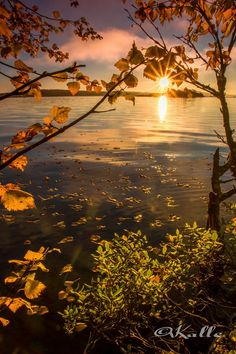 River, Celestial, Sunset, Landscape, Outdoor, Outdoors, Scenery, Landscape Paintings, Sunsets