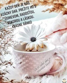 Good Morning, Night, Funny, Blog, Decor, Buen Dia, Decoration, Bonjour, Funny Parenting