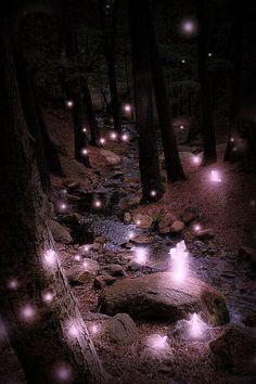 Fairies #amazing #beautiful pictures