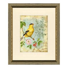 gold framed bird print - Google Search