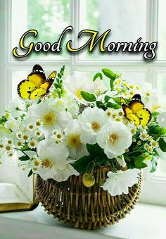 Good Morning Images For Whatsapp Good Morning Beautiful Images, Good Morning Images Hd, Good Morning My Love, Good Morning Flowers, Good Morning Picture, Morning Pictures, Happy Birthday Wishes Cake, Morning Greeting, Morning Quotes