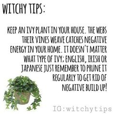 green witchcraft Ladymysticmagik on Green Witchcraft, Wiccan Witch, Magick Spells, Reiki, Witchcraft For Beginners, Herbal Magic, Baby Witch, Eclectic Witch, Witch Spell