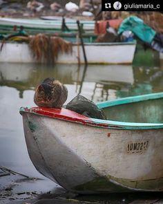 Photo Background Images, Editing Background, Picsart Background, Background For Photography, Download Hair, Small Boats, Photo Backgrounds, Beautiful Sunset, Photo Editing