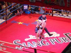 Fighting ~~~