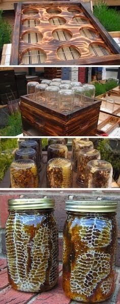 DIY Beehive in a Jar - Backyard Honey with this easy project. Honey with comb, already made inside of a mason jar! Fat Bee Man videos are also educational The Farm, Mini Farm, Farm Gardens, Outdoor Gardens, Veggie Gardens, Vegetable Gardening, Backyard Projects, Diy Projects, Outdoor Projects