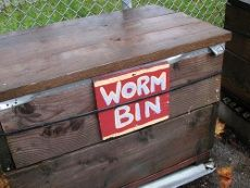Worm Composting Bins: Learn How To Make Your Own