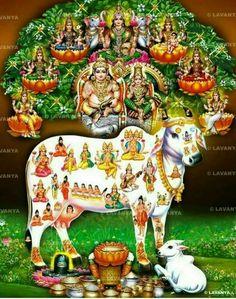 Kuber Lakshmi & Kamadenu Blessings - Another! Lord Murugan Wallpapers, Lord Vishnu Wallpapers, Shiva Linga, Shiva Shakti, Dancing Ganesha, Saraswati Goddess, Goddess Art, Lord Shiva Hd Images, Hanuman Wallpaper