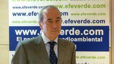 SIGNUS y EFEverde convocan un premio-beca de Periodismo Ambiental