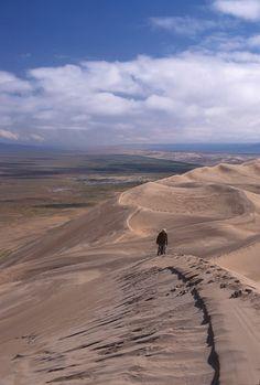 Khongorin Els, soth Gobi desert, Mongolia