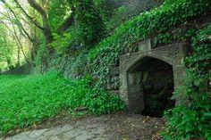 St. John's Well, Tavistock, Devon