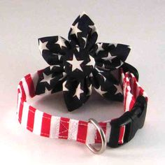 Little patriotic dog collar for Kate