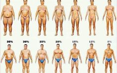 Knowing your body fat percentage is important for your weight loss journey. Learn how to measure your body fat and how it impacts your weight loss. Reduce Body Fat, Lose Body Fat, Fitness Workouts, Fitness Weightloss, Fat Workout, Weight Loss Plans, Weight Loss Program, Body Fat Percentage Chart, One Pound Of Fat