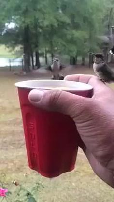 Sharing a drink with my friends